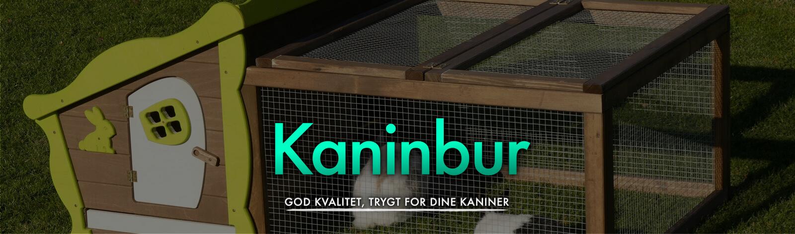 Kaninbur
