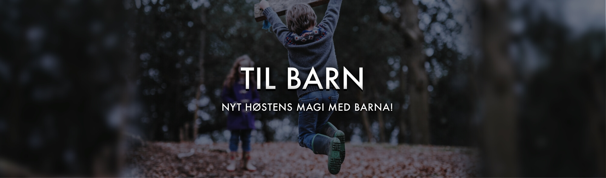 GÅSTOL & BÆRESELE