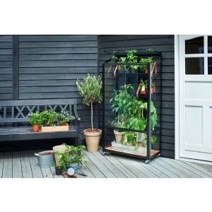 Juliana City Greenhouse | Minidrivhus