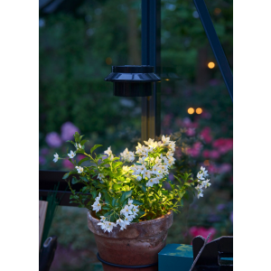 Juliana | Solcelle LED-lampe